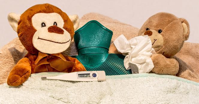 Propolisverdampfer -  Erkältungskrankheiten, Schnupfen, Husten, Bronchitis, Asthma, COPD