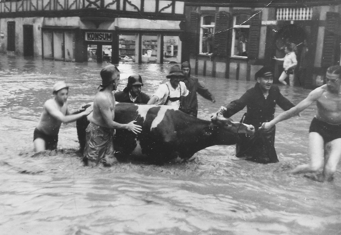 Hochwasser 1956, der Konsum im Hintergrund war später Foto Gärth