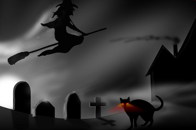 Vorsicht vor der schwarzen Katze mit den Röntgenaugen!!! (pixabay.com)