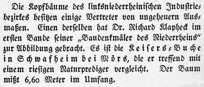 Literatur-Quelle aus Hugo Otto; Naturdenkmäler am Rhein; Seite 176; Mönchen-Gladbach 1922