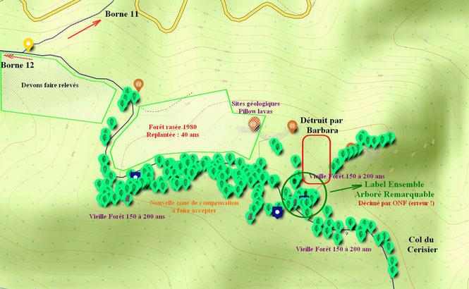 Parcelle labellisée mise à mal et zone voisine pour compensation située le long du chemin VTT et pédestre. Maintien d'une des dernières portions de vieille forêt en mémoire de la forêt Cathédrale avec l'association ACCOB d'Oloron