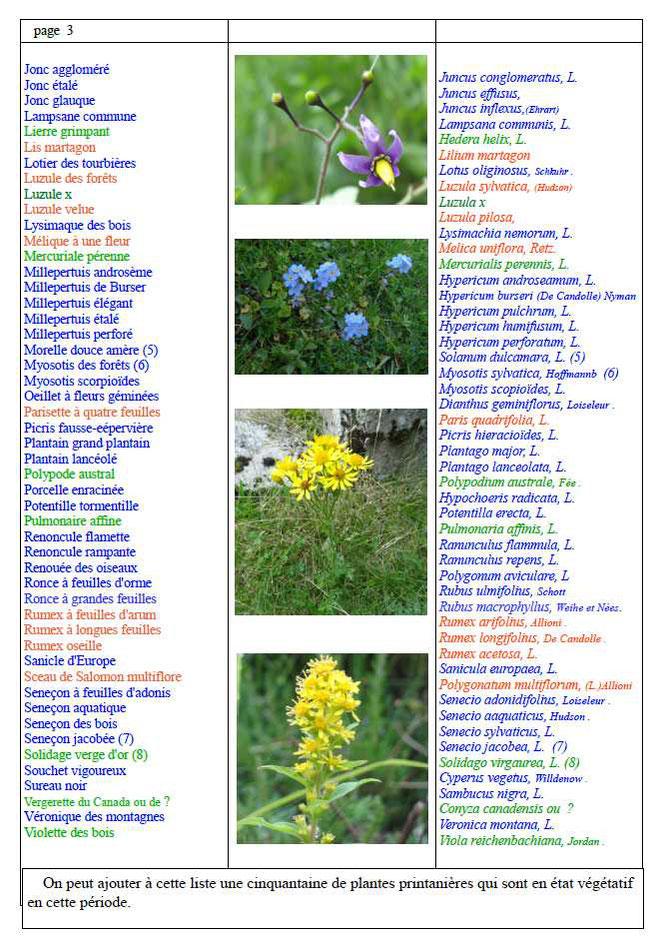 Suite, liste des plantes relevée par François Masonnave lors d'une sortie en forêt du Bager d'Oloron ce début d'été 2021 avec l'ACCOB