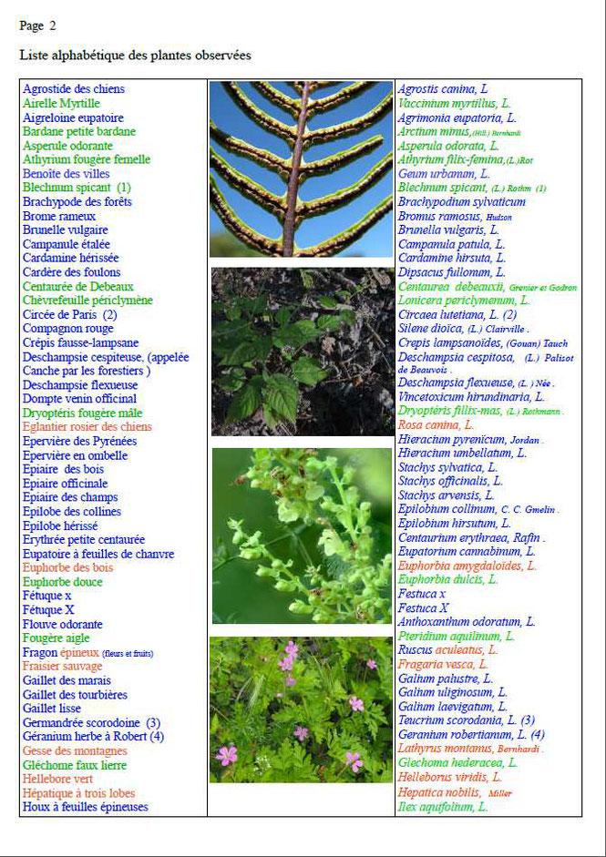 Liste de plantes lors de la randonnée en vieille forêt du Bager d'Oloron organisée par l'ACCOB-Oloron
