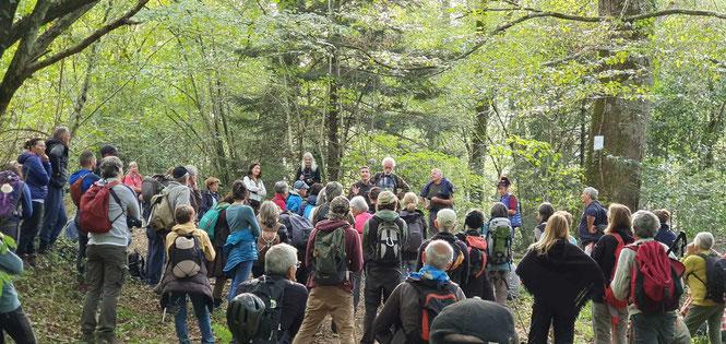 Des marcheurs animés d'une grande volonté à défendre les forêts des Pyrénées, ici dans la Forêt du Bager  avec l'ACCOB