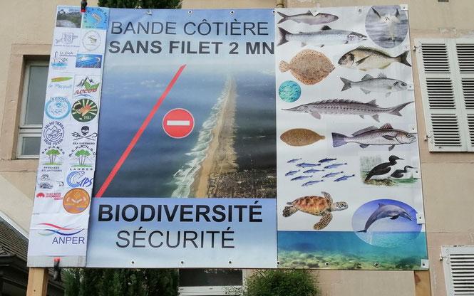 Tribunal Administratif Pau- Défense du saumon Atlantique de l'Océan aux frayères en forêt du Bager - ACCOB
