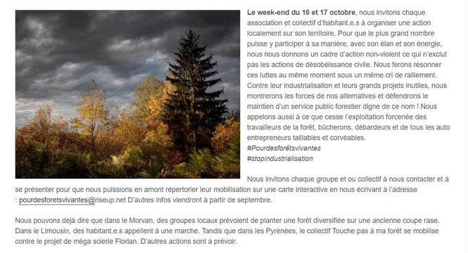 Tous rassemblés avec SOS Forêt France, dans les Pyrénées Atlantiques, l'ACCOB organise une journée dans la forêt du Bager d'Oloron_64400