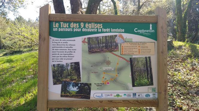 Certains l'ont fait. Pour quand à Oloron dans une vraie forêt, telle celle du Bager ? Projet de l'association ACCOB d'Oloron.
