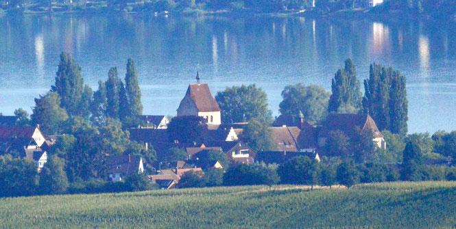 Suchen Sie das Kloster Mittelzell, wenn Sie das nächste Mal auf dem Napoleonturm sind!