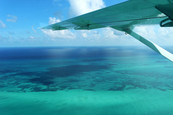 Tiny airplane in Belize