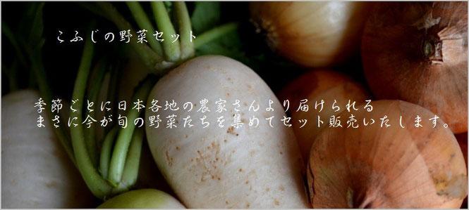 元気な野菜 こふじ