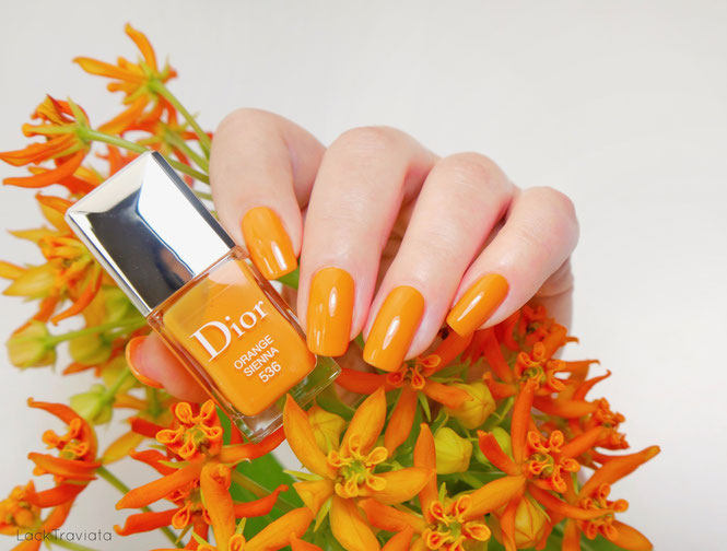 Dior • ORANGE SIENNA 536 • Dior Wild Earth Collection • Summer 2019