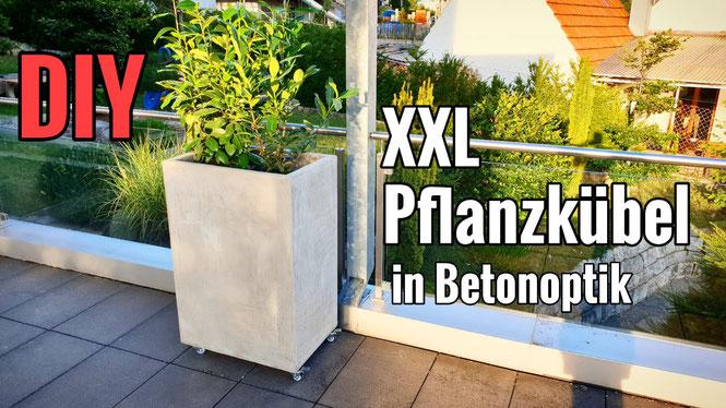 DIY Pflanzkübel / Raumteiler in Betonoptik selber bauen