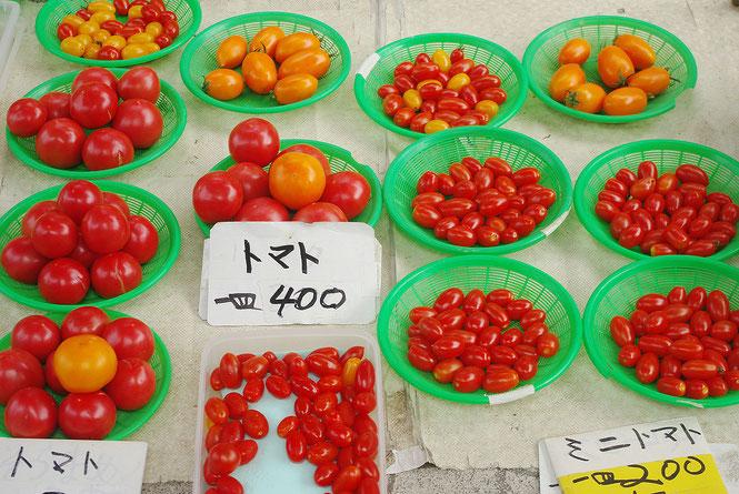 今日は麻倉さんの露店へ。ミニトマトのアイコのほか、桃太郎は赤いものや黄色いものがあります。まるでトマト博覧会です