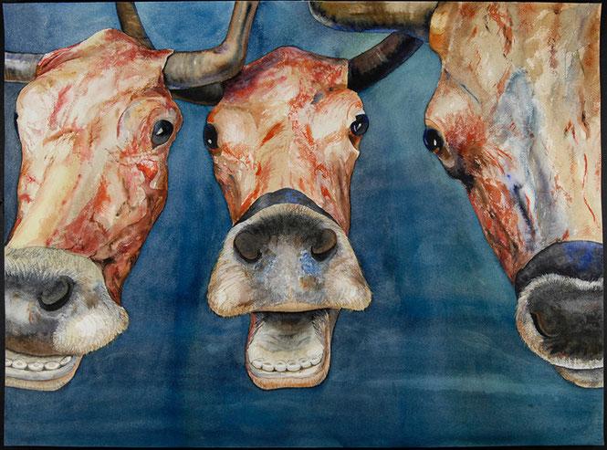 Vacas riendo 2007, acuarela 56X76 cm