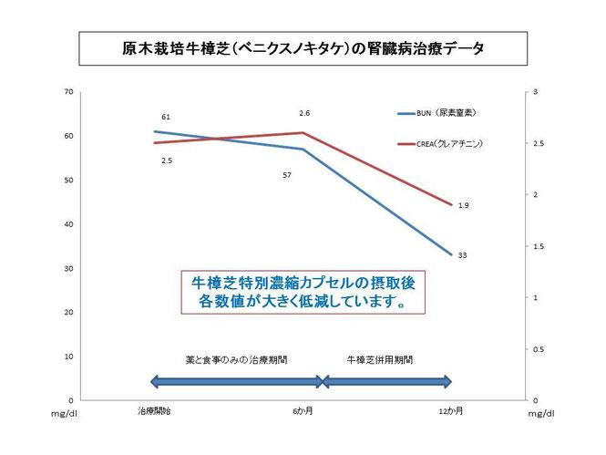 原木栽培牛樟芝(ベニクスノキタケ)の腎臓病改善データ