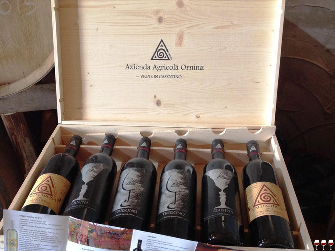 Ornina Wine. Casentino, Arezzo, Toscana. Itinerari di vino. Foto Blog Etesiaca