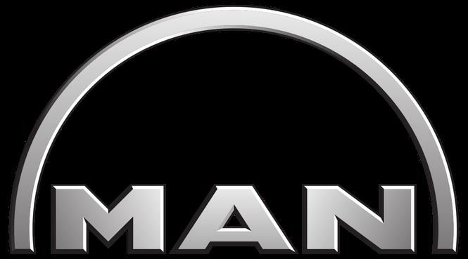 MAN Fault codes list - Free Download pdf  ewd, manuals
