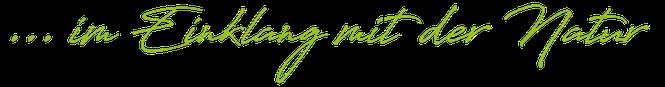 Christine Bauer, Seminarbäuerin, grüne Kosmethik, Kräuterpädagogin, Jin Shin Jyutsu im Bezirk Horn, Niederösterreich, Natürlich im Einklang mit der Natur