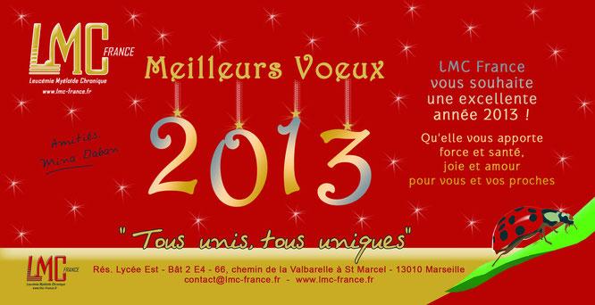 bonne annee 2013 lmc france Agenda cml leucemie myeloide chronique lmc cml leukemia leucémie myéloïde  cancer sang