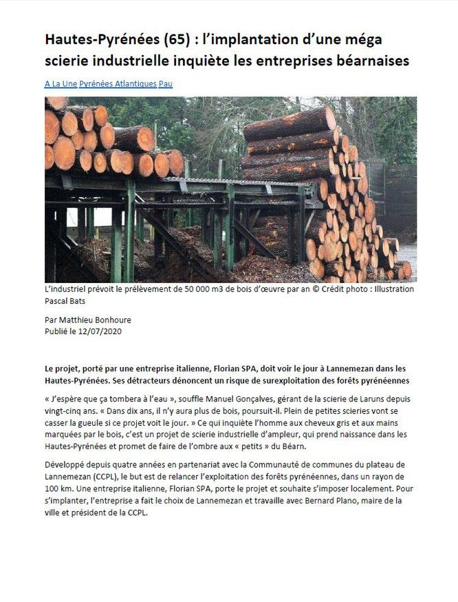 Le projet de Méga-scierie Florian inquiète la filière bois tout au long de la chaine des Pyrénées. Cette fois en Vallée d'Ossau. Page-1