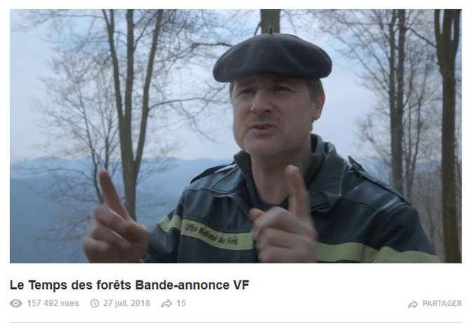 Le temps des forêts à Oloron au LUXOR avec l'ACCOB