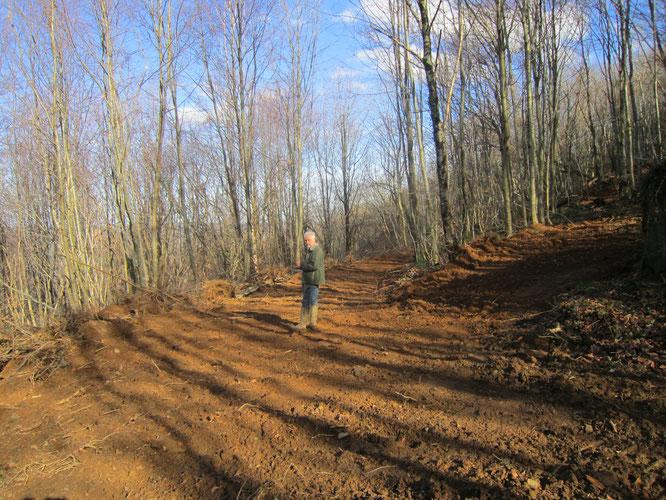 Une piste de 300 mètres sur 7 à 10 mètres de large, tout arraché, creusé...La forêt classée d'Oloron !