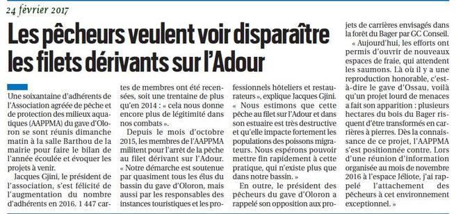 D'autres défendent le saumon des Pyrénées - A Oloron on prend des risques avec la pollution du gave.