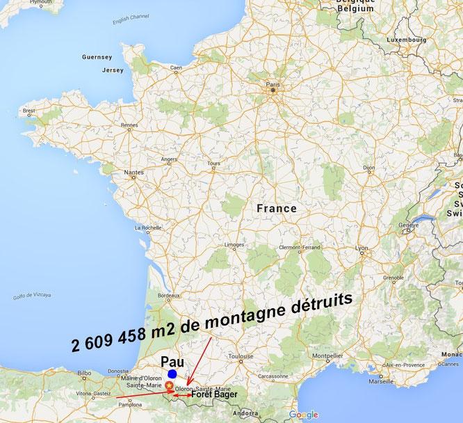 Foret du Bager d'Oloron dans les Pyrénées, aidez nous à la défendre ( ACCOB )