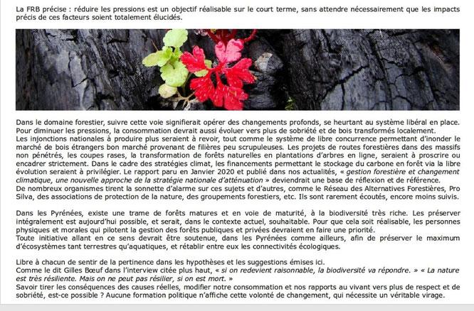 """La lettre de"""" vieillesforêts """"- je relaie la lettre de printemps qui reflète tout à fait l'actualité (ACCOB)"""