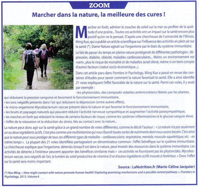 Marche en forêt du Bager d'Oloron, un remède naturel