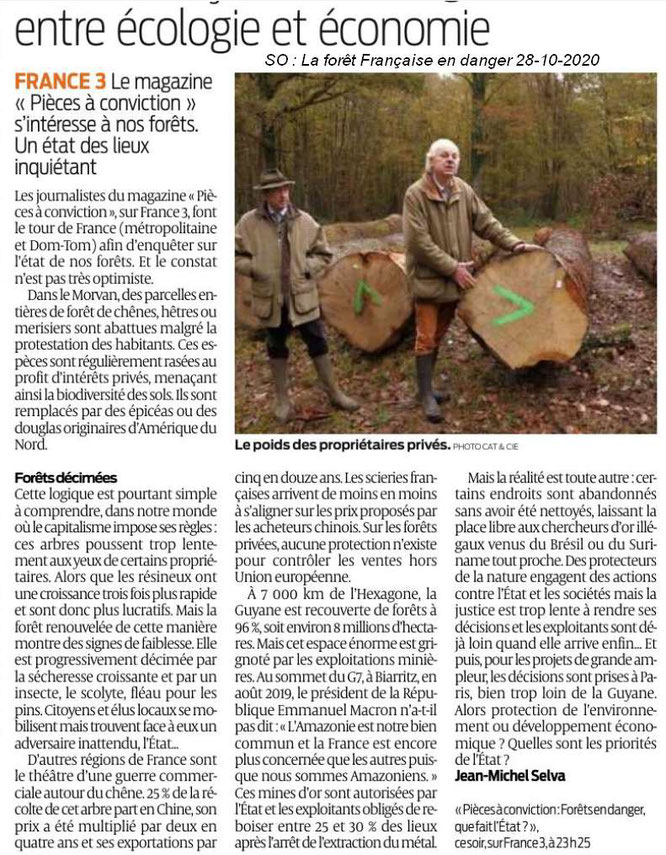 La forêt Française en danger sur FR3 ce 28 octobre 2020, info qui conforte nos différentes actions en France pour sauvegarder nos arbres