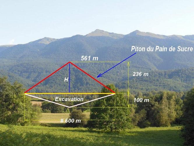 Une partie de forêt  qui pourrait disparaître du 1er chaînon des Pyrénées à Oloron
