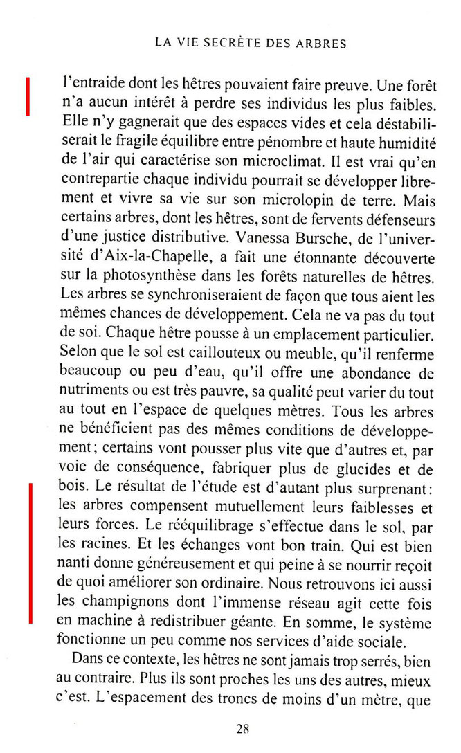 La SMB de Pau nous avait fait un petit exposé en 2016 lors d'une journée ACCOB, ce livre confirme le lien champignons / hêtres de la forêt d'Oloron en particulier.
