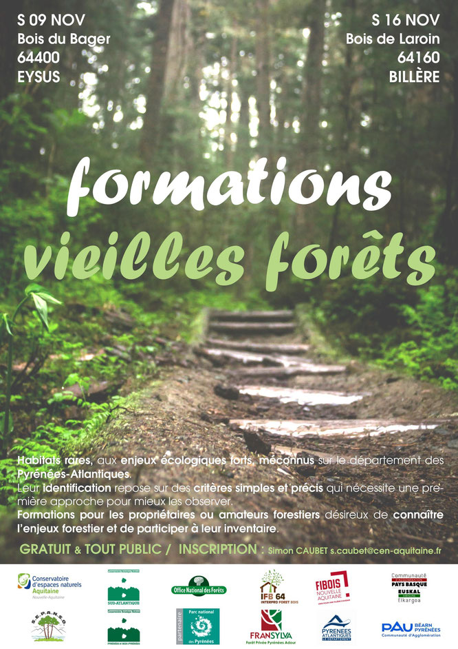 """Formation vielles forêts au Bager d'Oloron-Au Bager, ce sera une visite sur le lieu labellisé par ARBRES où l'ACCOB s'est vu attribuer le Label""""Ensemble Arboré Remarquable"""" au col du Cerisier"""