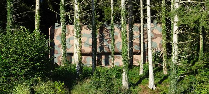 Bunkeranlage oberhalb Tägerwilens