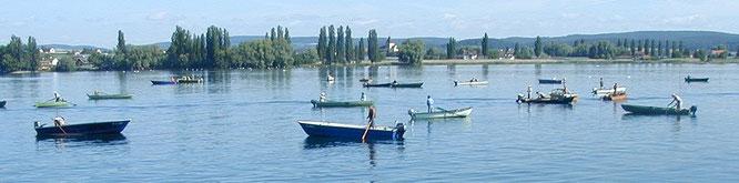 16'000 (!) Sportfischer löschen jährlich ihr Patent am Bodensee