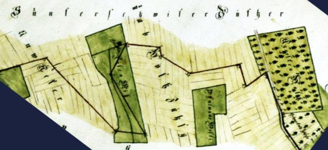 """Ausschnitt aus der Karte von 1794 """"Gerichtsgrenzen Wäldemer Lehen""""; Staatsarchiv TG"""