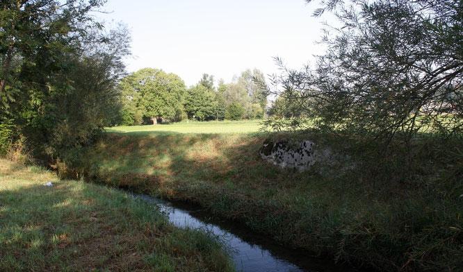 So kann man sich den schiffbaren Giessen vorstellen. Auf diesem Bild ist noch ein ehemaliger Brückenpfeiler der alten Landstrasse nach Bürglen erkennbar.