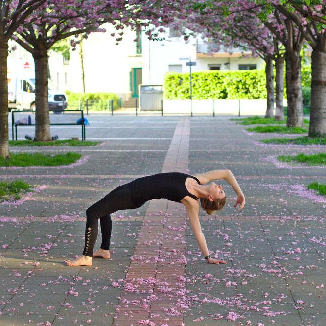 Yoga Zuhause - 7 ultimative Tipps für Anfänger - fluegelwesen.de