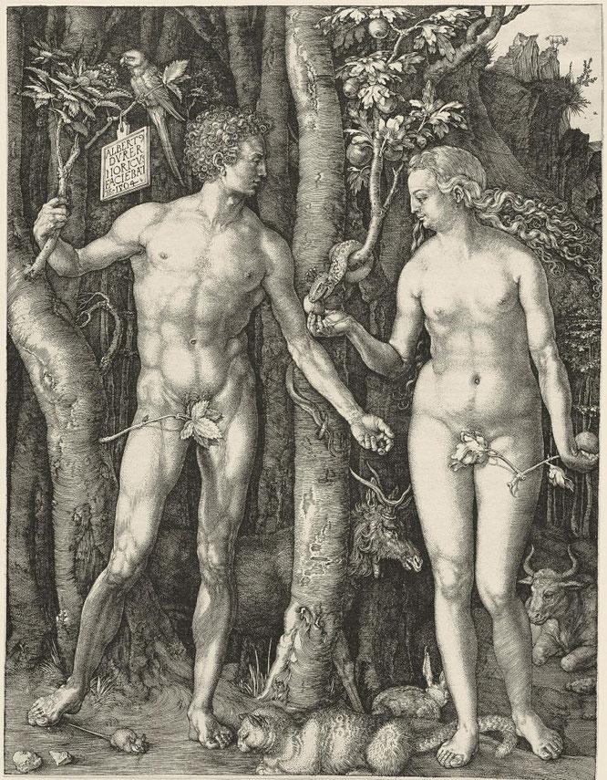 《アダムとイブ》,1504年