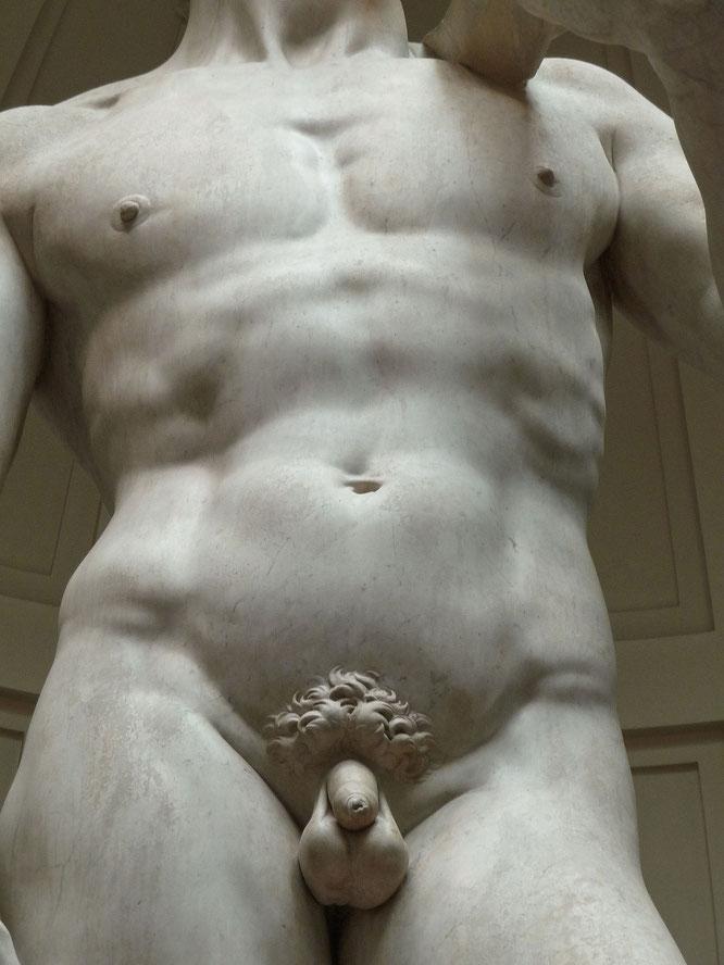 包皮のあるユダヤ人ダビデ像