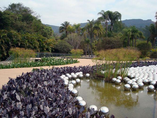 「ナルシスの庭」2008年 ブラジル Instituto Inhotim