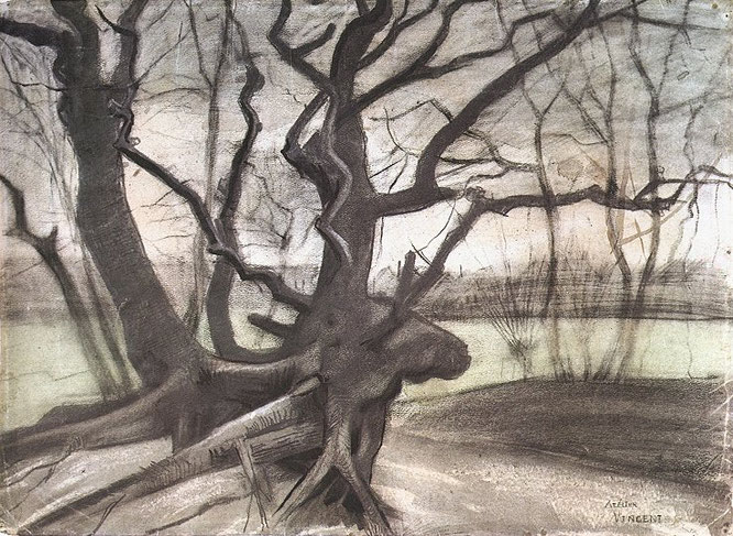 フィンセント・ファン・ゴッホ「砂地の木の根」(1882年)