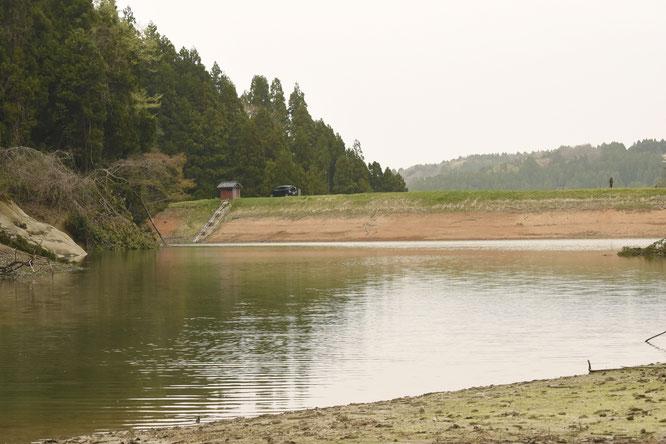 ダムの内側から見た様子。せき止めた向こう側に田んぼが広がっている。