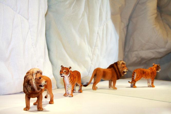 Der Löwe jagt die Tigerin. Oder den Löwen jagt die Tigerin? Einer der Sätze, die von Patienten im Experiment mit Spielfiguren nachgestellt werden. Objekt und Subjekt richtig zuzuordnen fällt ihnen dabei oft schwer.