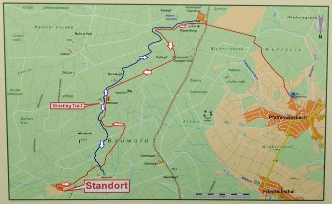 MTB-Trail Winterstein - Naturpark Taunus in Zusammenarbeit mit Locals von Gravity Pilots