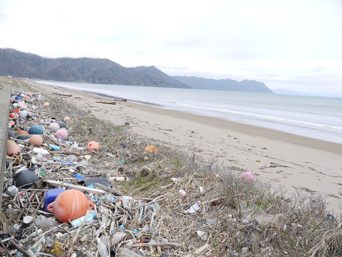 japan plastic pollution
