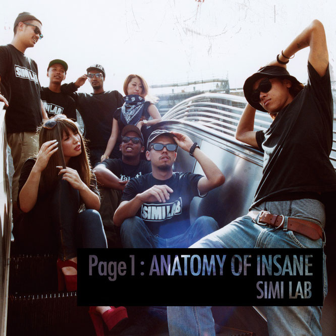 SIMI LAB Page1:ANATOMY OF INSANE