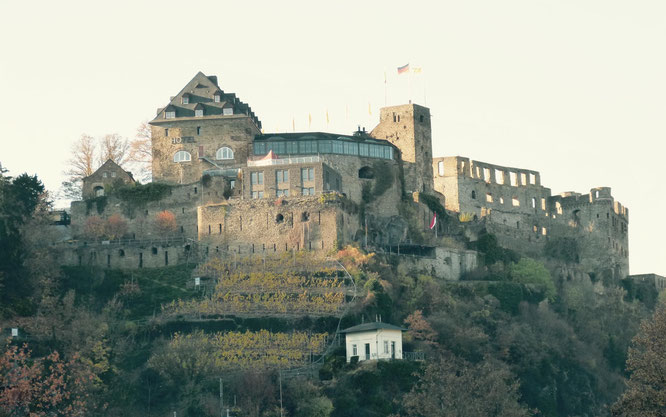 Imposant groß - Burg Rheinfels in St. Goar
