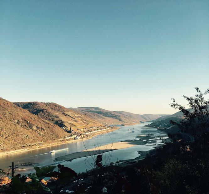 Ausblick von Burg Stahleck auf den Rhein!